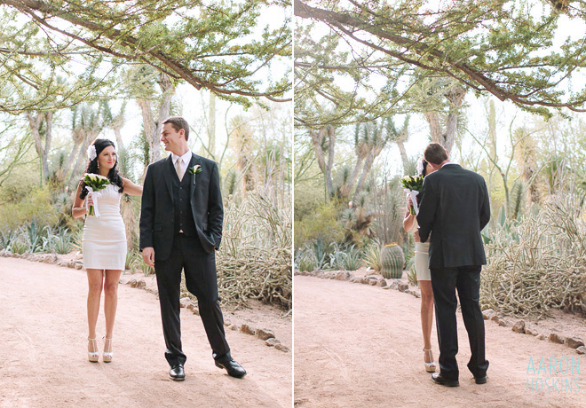 Desert Botanical Garden Wedding Aaron Hoskins Photography